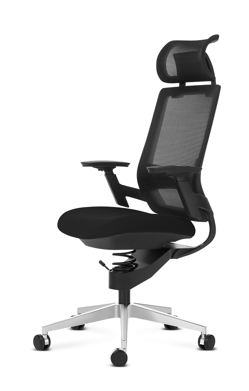 Adaptic COMFORT - Comfortable therapeutic office chair for medium and large build for healthy back